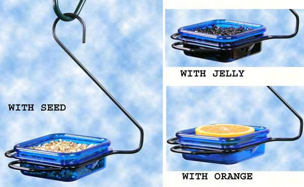 Hanging Jelly & Mealworm Feeder